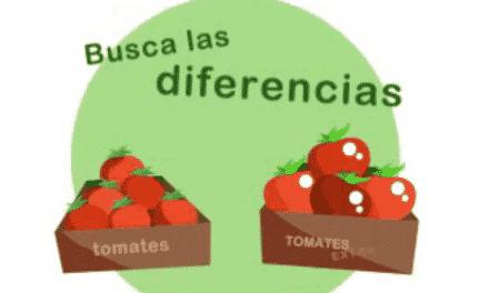 Busca las diferencias entre dos tomates de distintos cultivos