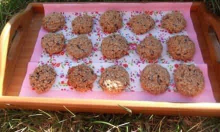 Receta de galletas de avena y pepitas de chocolate
