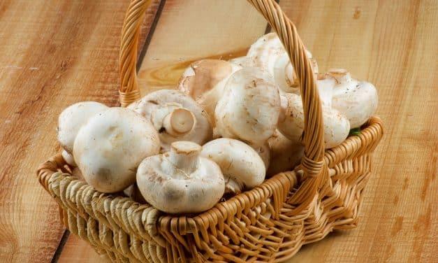 Receta de crema de champiñones con espinacas y frutos secos