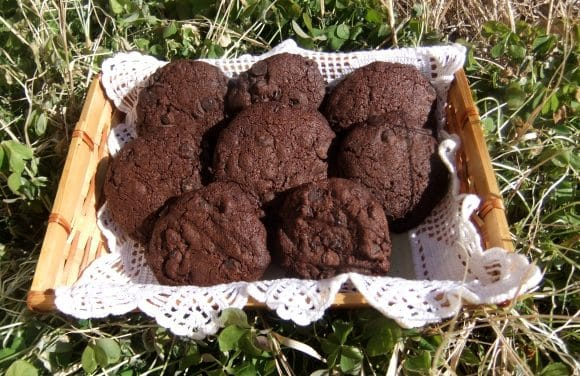 GALLETOTERAPIA con Nigella Lawson: galletas triple chocolate