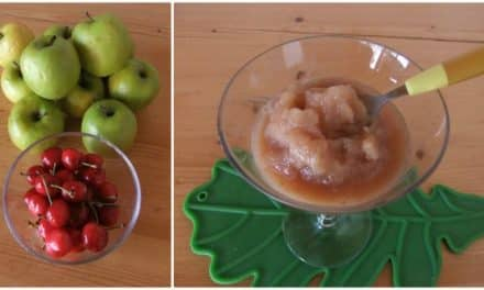 Sorbete express de cerezas y manzanas (vídeo)