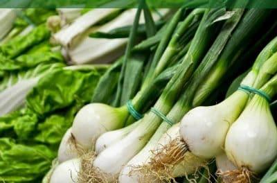 24 alimentos anticáncer: nuestra despensa medicinal