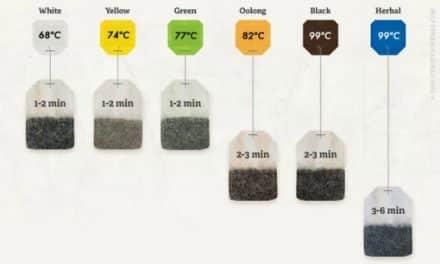 ¿Cuánto tiempo infusiono un té?