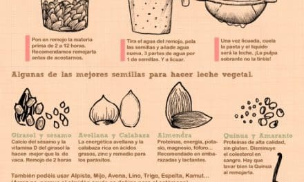 Cómo hacer leches vegetales en 3 sencillos pasos (infografía)
