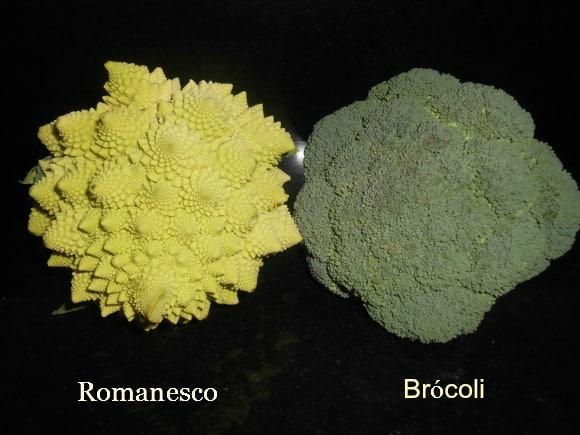 Romanesco, brócoli, los fractales y la Geometría Sagrada