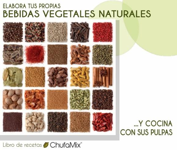 Recetario de bebidas vegetales naturales gratuito
