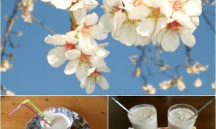 La almendra y la leche de almendras