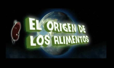 El origen de los alimentos: breve documental animado