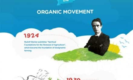 Historia del movimiento de los alimentos orgánicos (infografía)