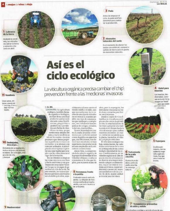 Así es el ciclo del vino ecológico