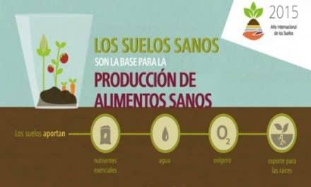 Suelos sanos para alimentos sanos (infografías)