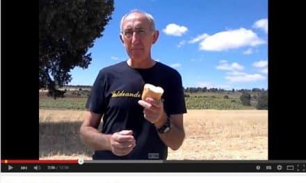 Los problemas del pan industrial (video de 12 minutos)