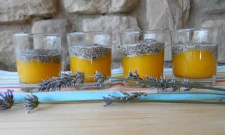 Receta de pudding de mango con semillas de chía