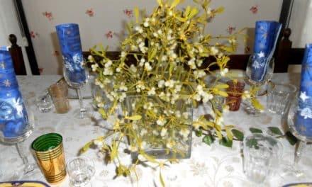MUÉRDAGO en nuestra casa: magia y decoración