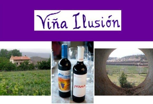 «El vino ecológico se parece más al vino que elaboraban nuestros antepasados» Entrevista a Martín Alonso, eco-viticultor