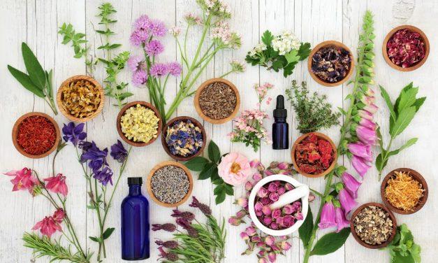 Sobre suplementos y herbolarios. Entrevista a David Hillera